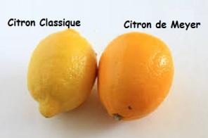 citron/citron meyer